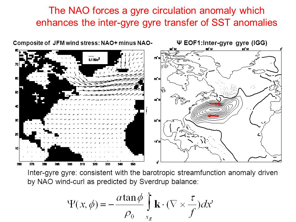 Inter-gyre gyre: consistent with the barotropic streamfunction anomaly driven by NAO wind-curl as predicted by Sverdrup balance: The NAO forces a gyre