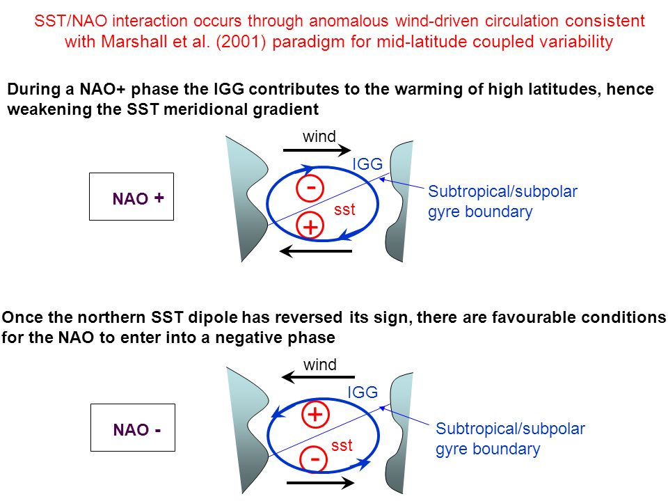 + - wind IGG sst During a NAO+ phase the IGG contributes to the warming of high latitudes, hence weakening the SST meridional gradient NAO + Once the