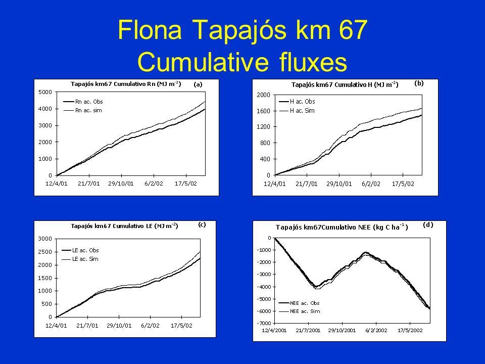 Flona Tapajós km 67 Cumulative fluxes