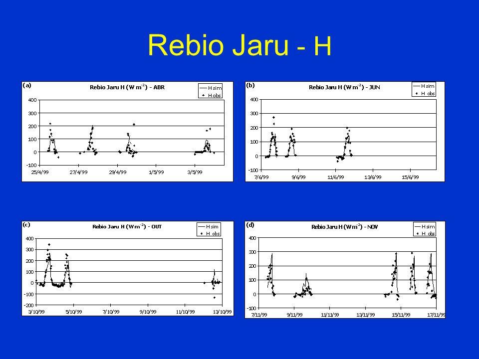Rebio Jaru - H