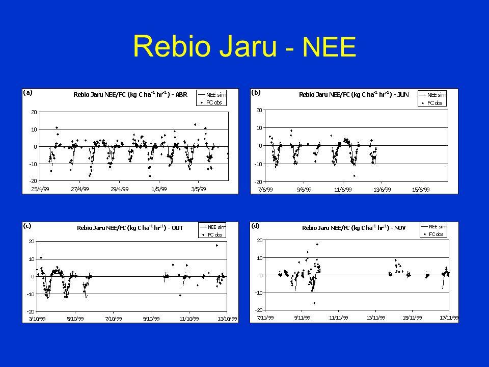 Rebio Jaru - NEE