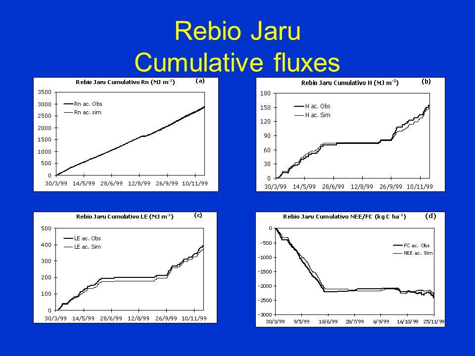 Rebio Jaru Cumulative fluxes