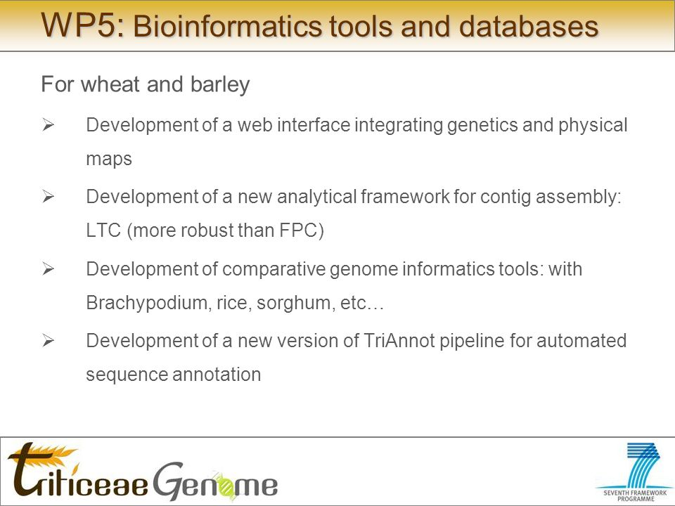 WP5: Bioinformatics tools and databases For wheat and barley Development of a web interface integrating genetics and physical maps Development of a new analytical framework for contig assembly: LTC (more robust than FPC) Development of comparative genome informatics tools: with Brachypodium, rice, sorghum, etc… Development of a new version of TriAnnot pipeline for automated sequence annotation