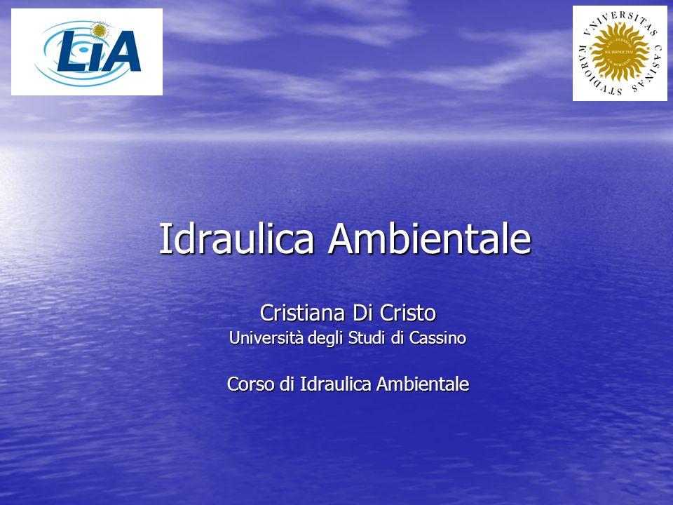 Idraulica Ambientale Cristiana Di Cristo Università degli Studi di Cassino Corso di Idraulica Ambientale