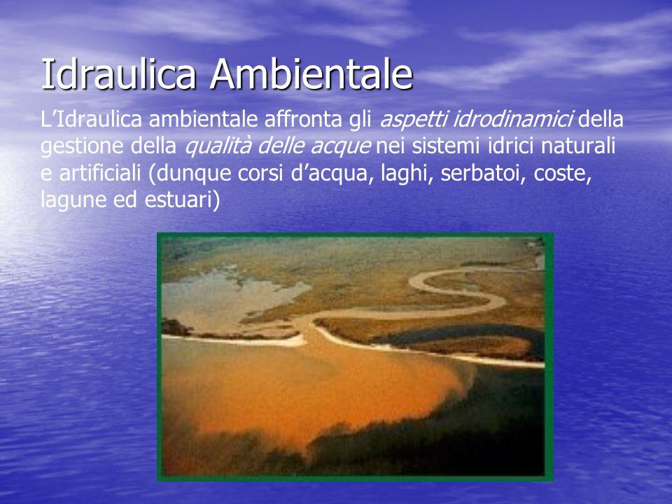 Idraulica Ambientale LIdraulica ambientale affronta gli aspetti idrodinamici della gestione della qualità delle acque nei sistemi idrici naturali e artificiali (dunque corsi dacqua, laghi, serbatoi, coste, lagune ed estuari)