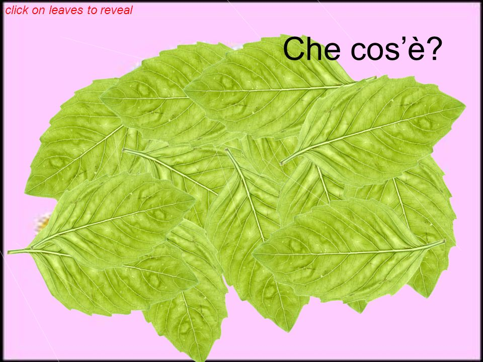 click on leaves to reveal Che cosè?