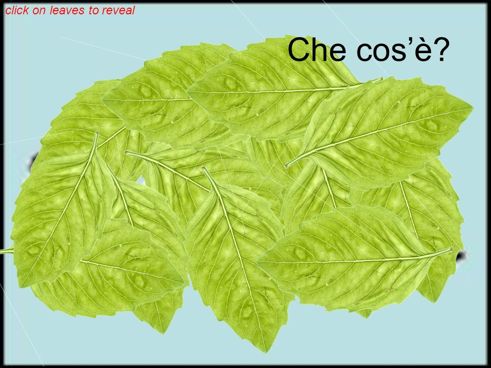 click on leaves to reveal Che cosè
