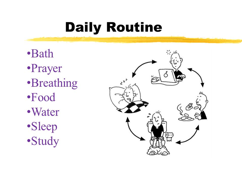 Daily Routine Bath Prayer Breathing Food Water Sleep Study