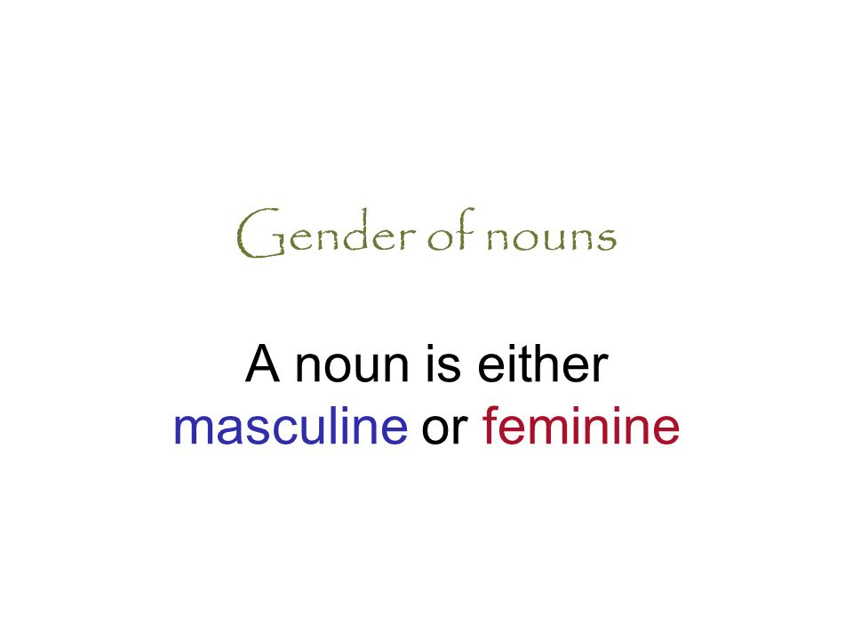Gender of nouns A noun is either masculine or feminine