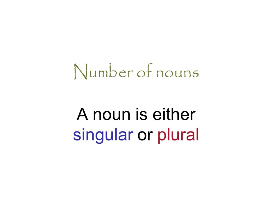 Number of nouns A noun is either singular or plural
