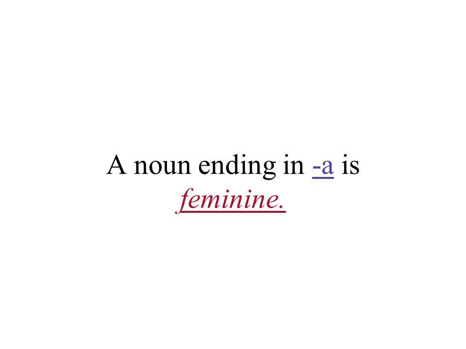A noun ending in -a is feminine.