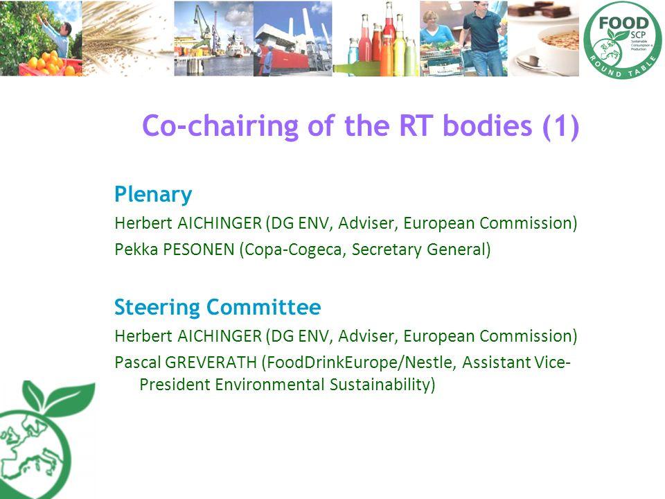Co-chairing of the RT bodies (1) Plenary Herbert AICHINGER (DG ENV, Adviser, European Commission) Pekka PESONEN (CopaCogeca, Secretary General) Steeri