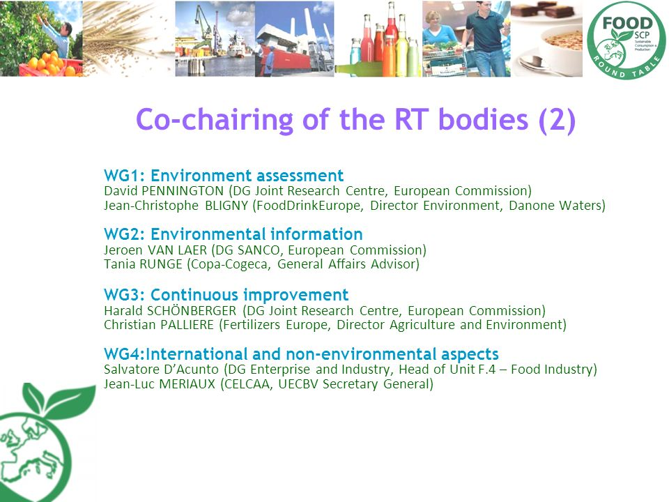 Co-chairing of the RT bodies (2) WG1: Environment assessment David PENNINGTON (DG Joint Research Centre, European Commission) Jean-Christophe BLIGNY (