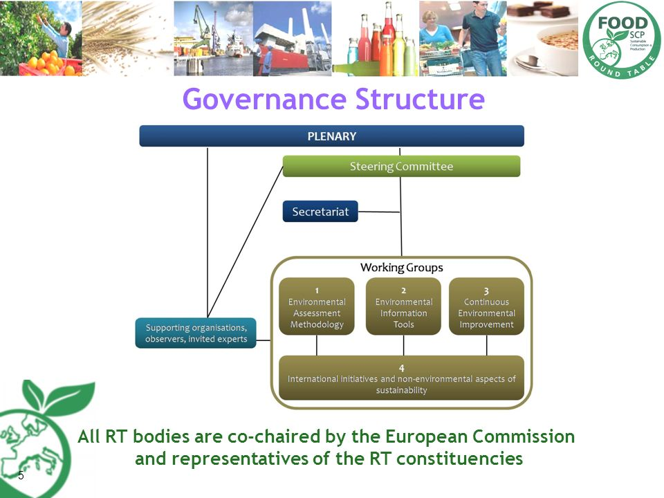 5 Governance Structure All RT bodies are co-chaired by the European Commission and representatives of the RT constituencies