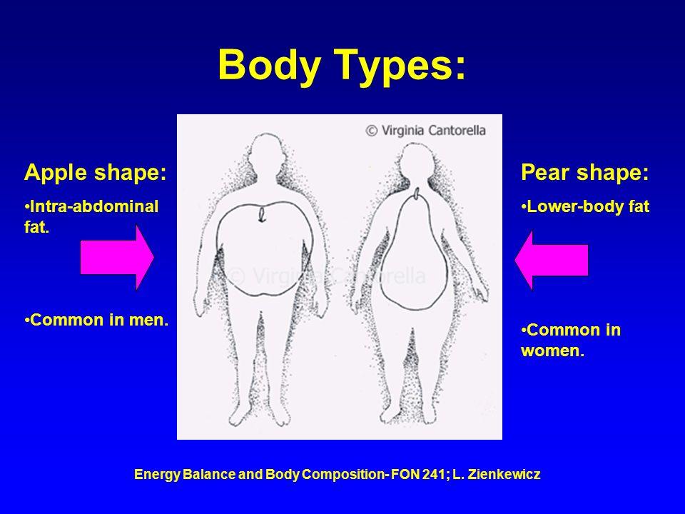 Energy Balance and Body Composition- FON 241; L. Zienkewicz Body Types: Apple shape: Intra-abdominal fat. Common in men. Pear shape: Lower-body fat Co