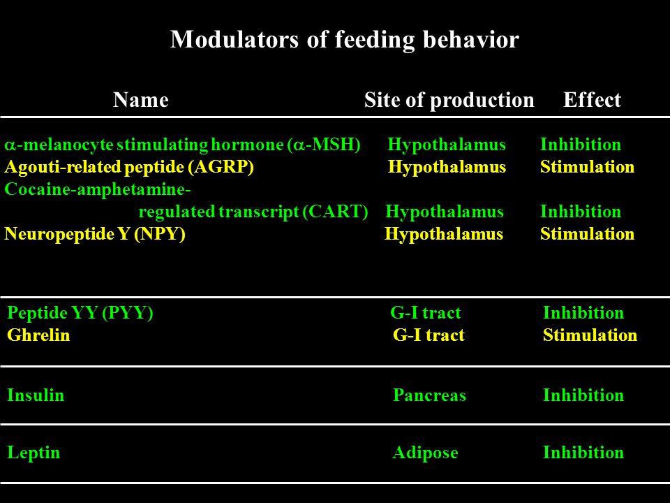 Modulators of feeding behavior Name Site of production Effect -melanocyte stimulating hormone ( -MSH) Hypothalamus Inhibition Agouti-related peptide (