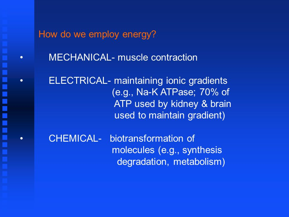 How do we employ energy? MECHANICAL- muscle contraction ELECTRICAL- maintaining ionic gradients (e.g., Na-K ATPase; 70% of ATP used by kidney & brain