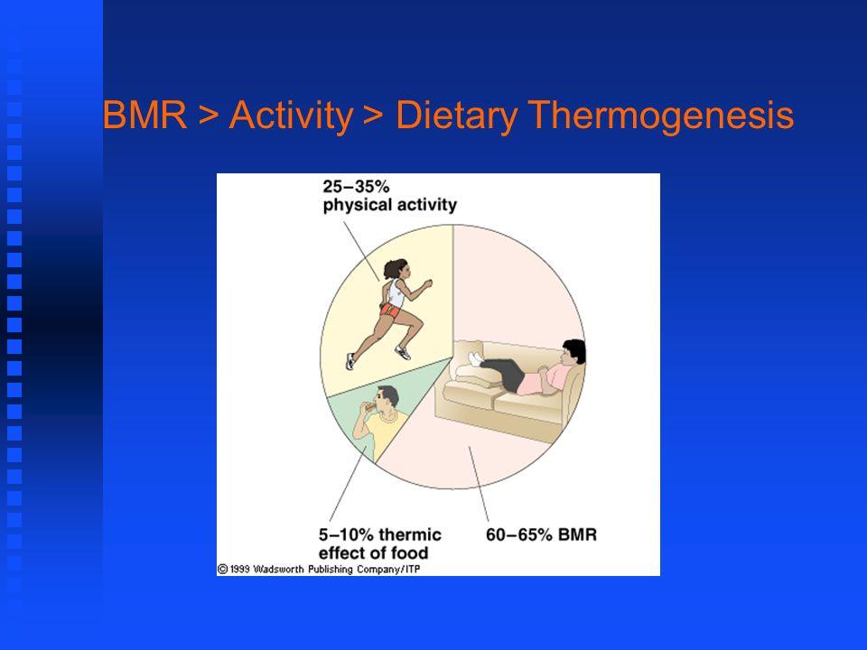 BMR > Activity > Dietary Thermogenesis