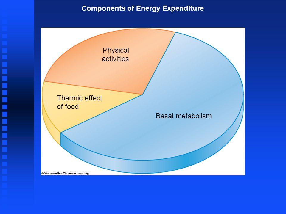 Measurement of Energy Intake Energy needs Metabolic Energy Yields