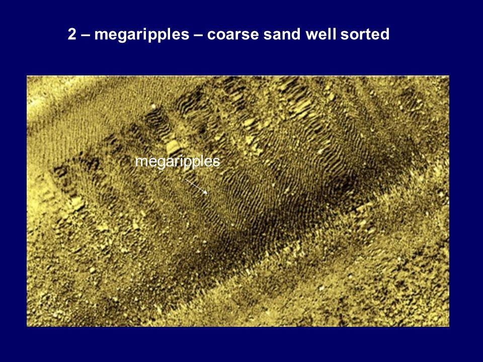 2 – megaripples – coarse sand well sorted megaripples
