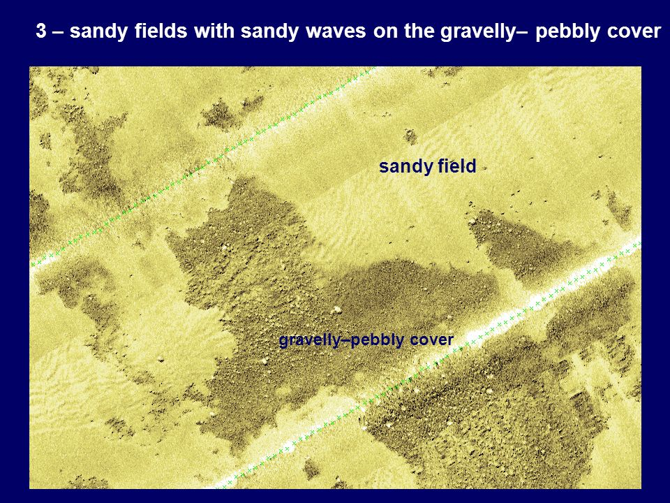 3 – sandy fields with sandy waves on the gravelly– pebbly cover sandy field gravelly–pebbly cover