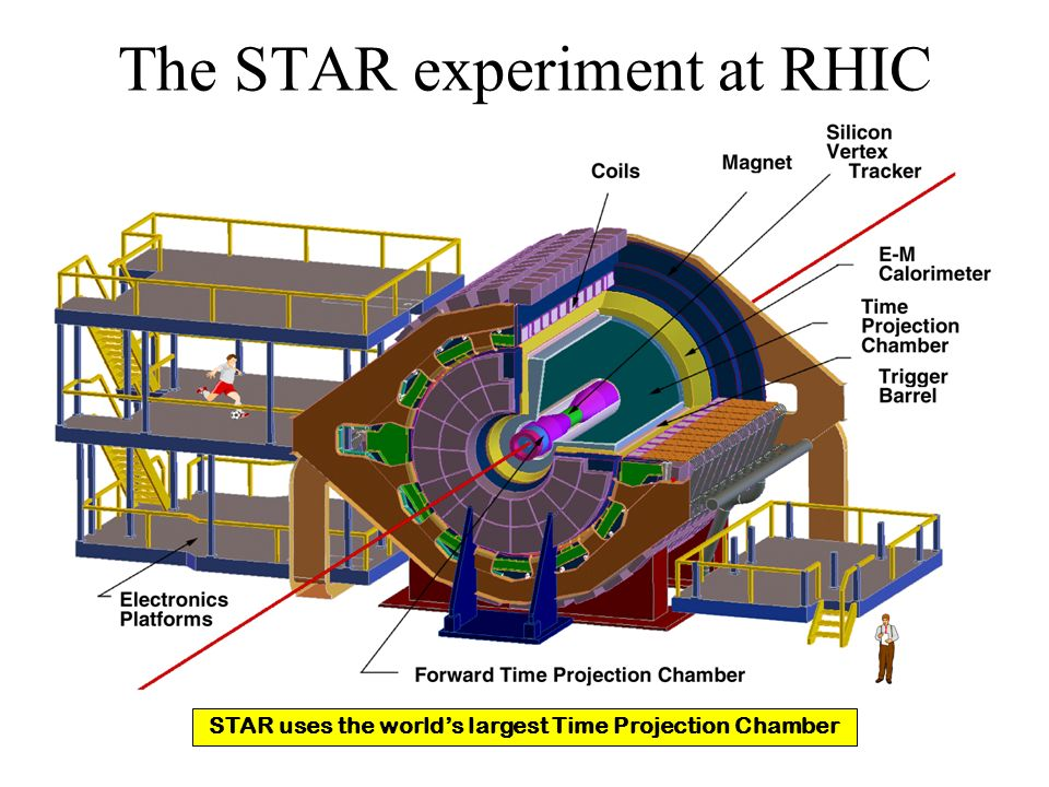 The STAR experiment at RHIC STAR uses the worlds largest Time Projection Chamber