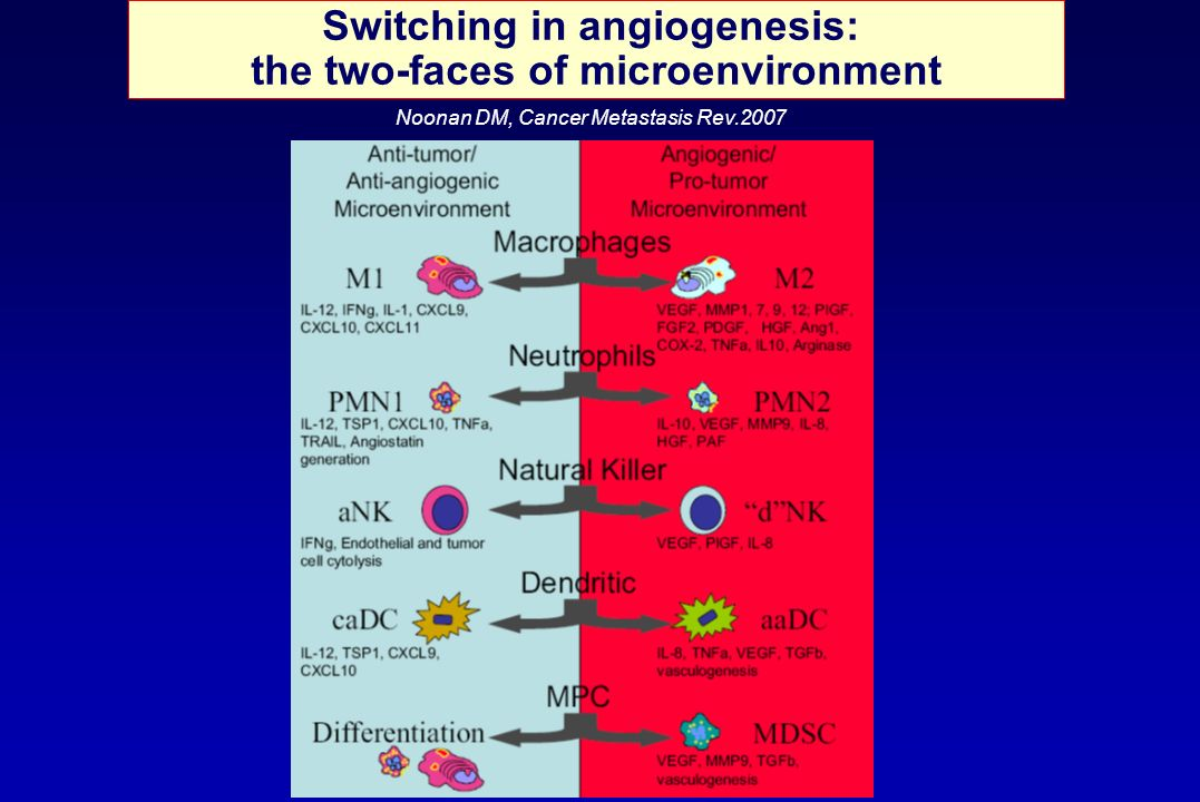 Switching in angiogenesis: the two-faces of microenvironment Noonan DM, Cancer Metastasis Rev.2007