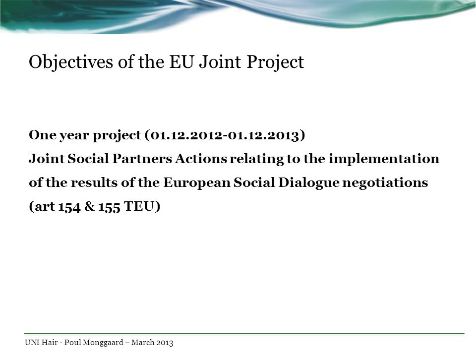 Objectives of the EU Joint Project One year project (01.12.2012-01.12.2013) Joint Social Partners Actions relating to the implementation of the result