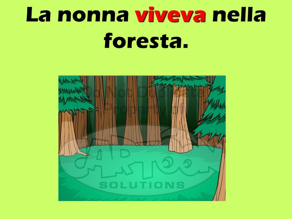 viveva La nonna viveva nella foresta.