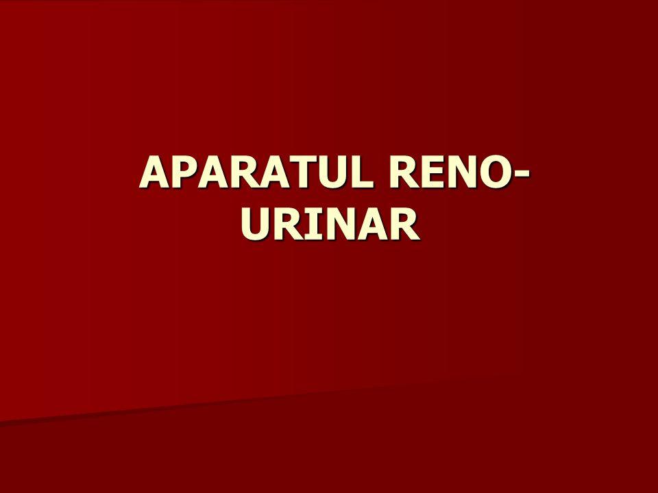 APARATUL RENO- URINAR APARATUL RENO- URINAR