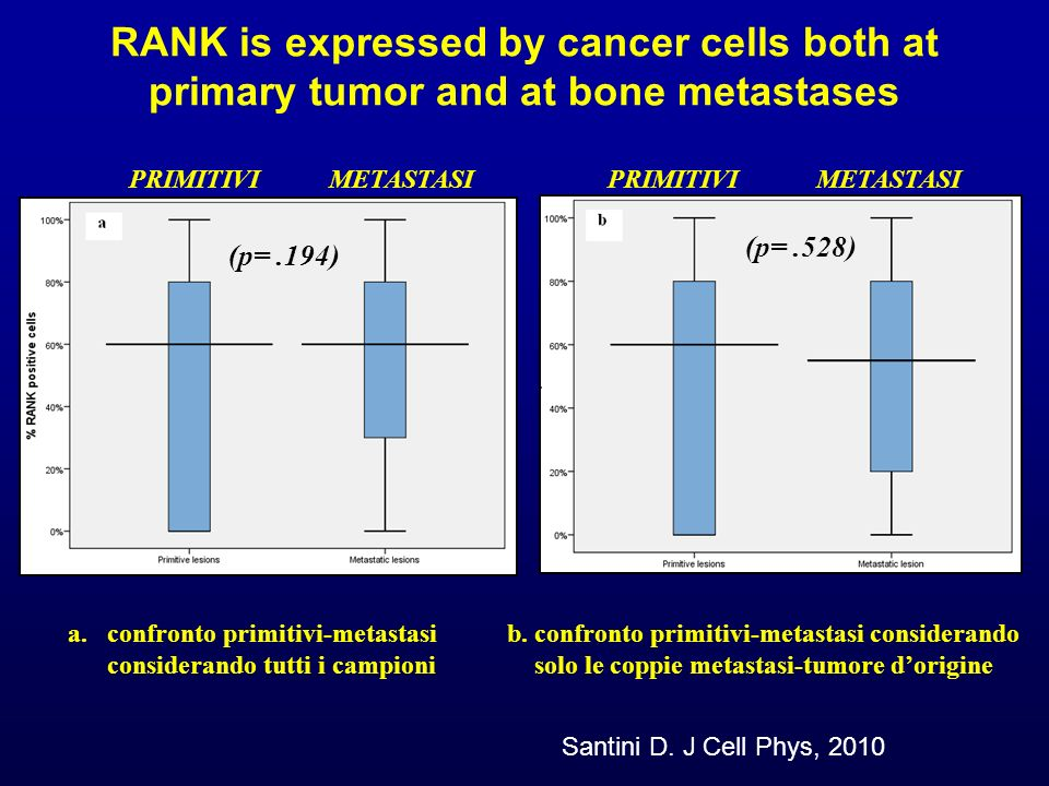 RANK is expressed by cancer cells both at primary tumor and at bone metastases PRIMITIVIMETASTASIPRIMITIVIMETASTASI (p=.194) (p=.528) a.confronto prim