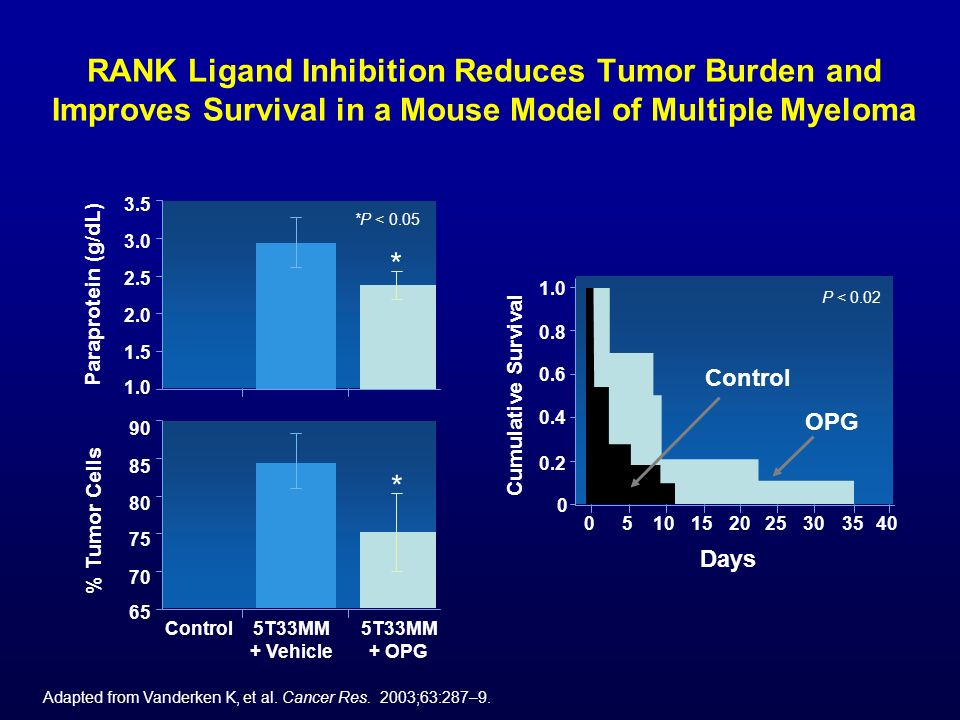 RANK Ligand Inhibition Reduces Tumor Burden and Improves Survival in a Mouse Model of Multiple Myeloma Adapted from Vanderken K, et al. Cancer Res. 20