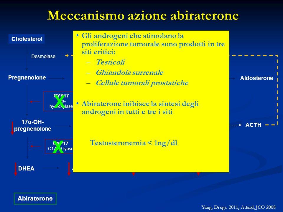 Meccanismo azione abiraterone Cholesterol Pregnenolone Progesterone Corticosterone 17α-OH- pregnenolone DHEA Androstenedione 17α –OH- progesterone Cor