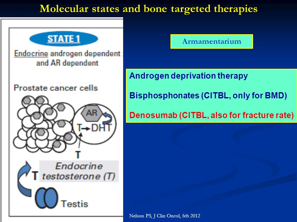 Molecular states and bone targeted therapies Nelson PS, J Clin Oncol, feb 2012 Armamentarium Androgen deprivation therapy Bisphosphonates (CITBL, only