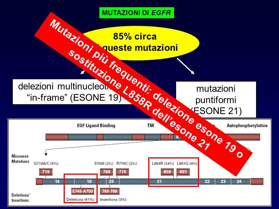 85% circa di queste mutazioni delezioni multinucleotidiche in-frame (ESONE 19) mutazioni puntiformi (ESONE 21) MUTAZIONI DI EGFR Mutazioni più frequen