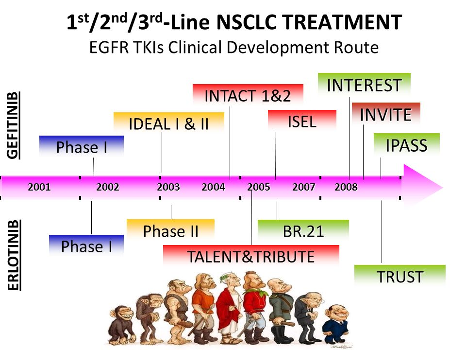 1 st /2 nd /3 rd -Line NSCLC TREATMENT EGFR TKIs Clinical Development Route 20012002 2003 2004 2005 2007 2008 GEFITINIB ERLOTINIB Phase I IDEAL I & II