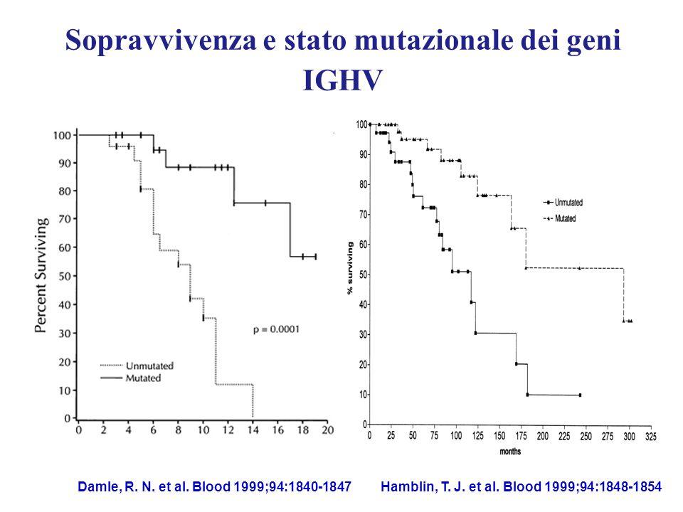 Sopravvivenza e stato mutazionale dei geni IGHV Hamblin, T. J. et al. Blood 1999;94:1848-1854 95 mesi 293 mesi Damle, R. N. et al. Blood 1999;94:1840-