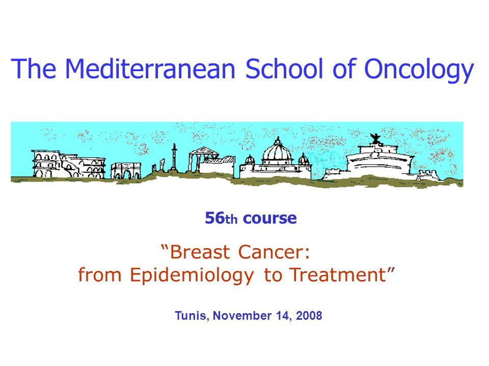The Mediterranean School of Oncology 56 th course Breast Cancer: from Epidemiology to Treatment Tunis, November 14, 2008