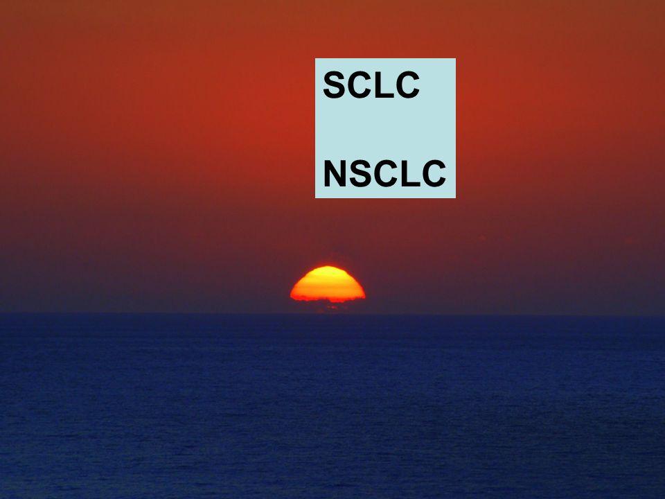 SCLC NSCLC