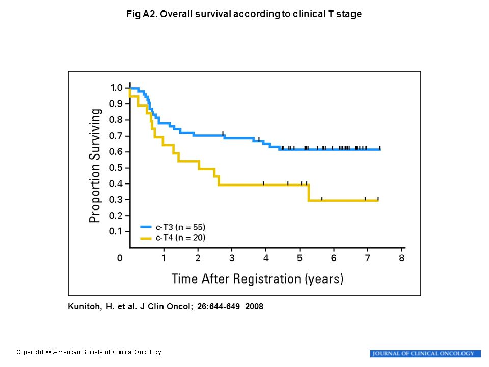 Kunitoh, H. et al. J Clin Oncol; 26:644-649 2008 Fig A2. Overall survival according to clinical T stage