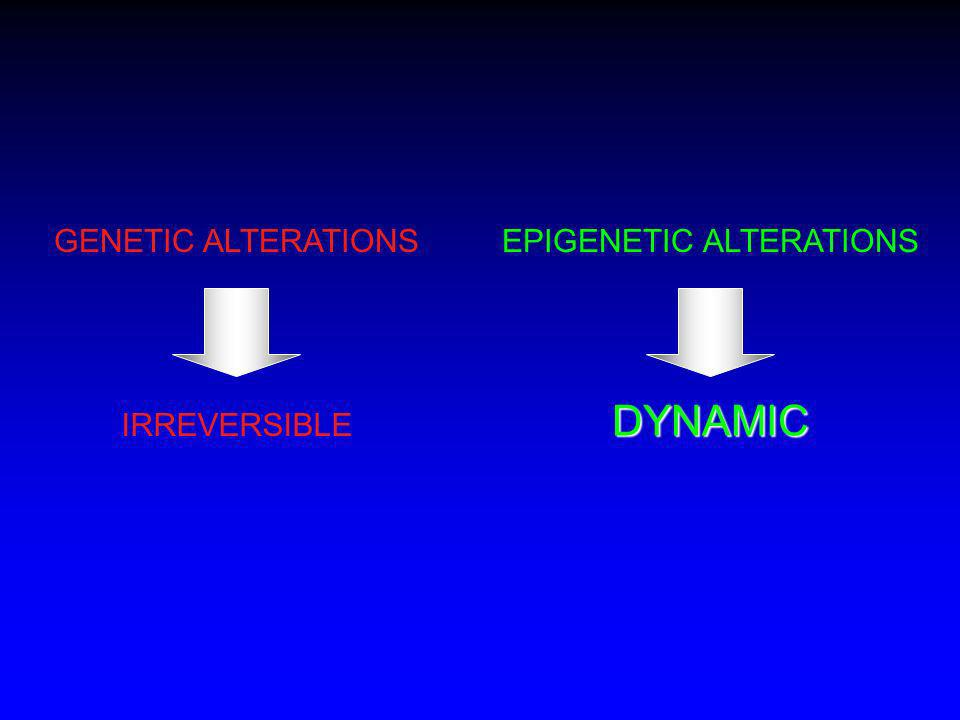GENETIC ALTERATIONS IRREVERSIBLE EPIGENETIC ALTERATIONS DYNAMIC
