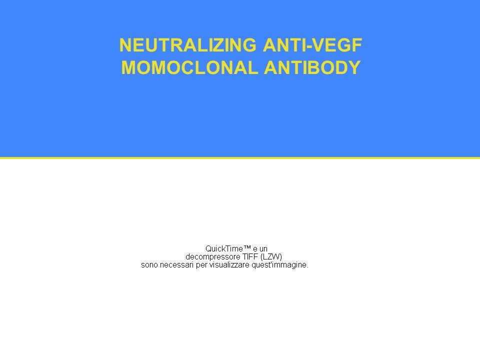 NEUTRALIZING ANTI-VEGF MOMOCLONAL ANTIBODY