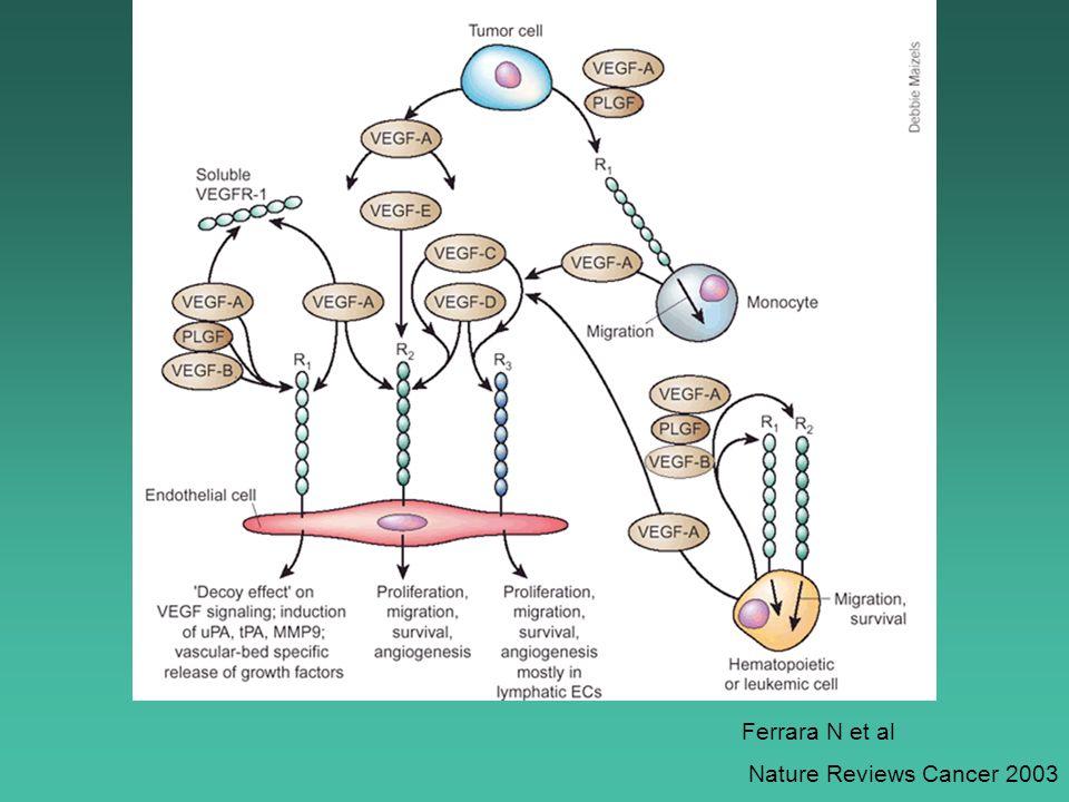 Ferrara N et al Nature Reviews Cancer 2003