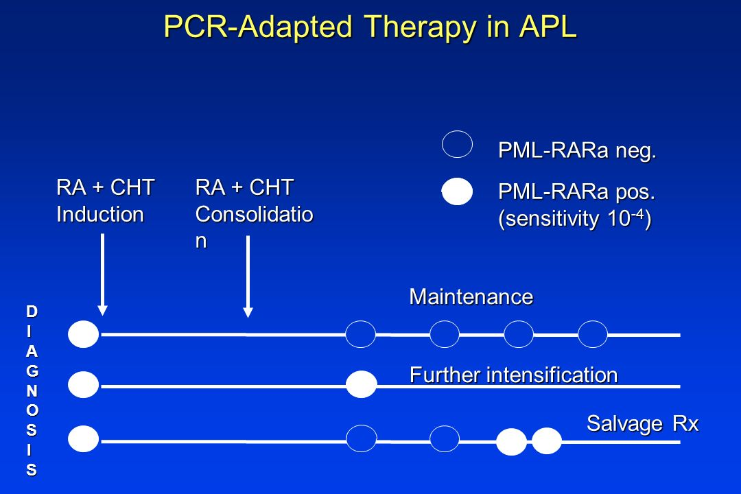 PCR-Adapted Therapy in APL PCR-Adapted Therapy in APL DIAGNOSISDIAGNOSISDIAGNOSISDIAGNOSIS RA + CHT Induction Salvage Rx RA + CHT Consolidatio n Maint