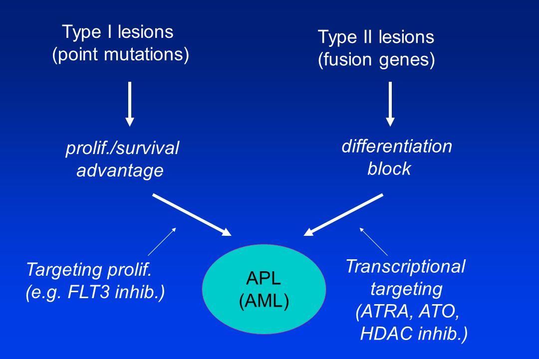 Type I lesions (point mutations) Type II lesions (fusion genes) differentiation block APL (AML) prolif./survival advantage Transcriptional targeting (