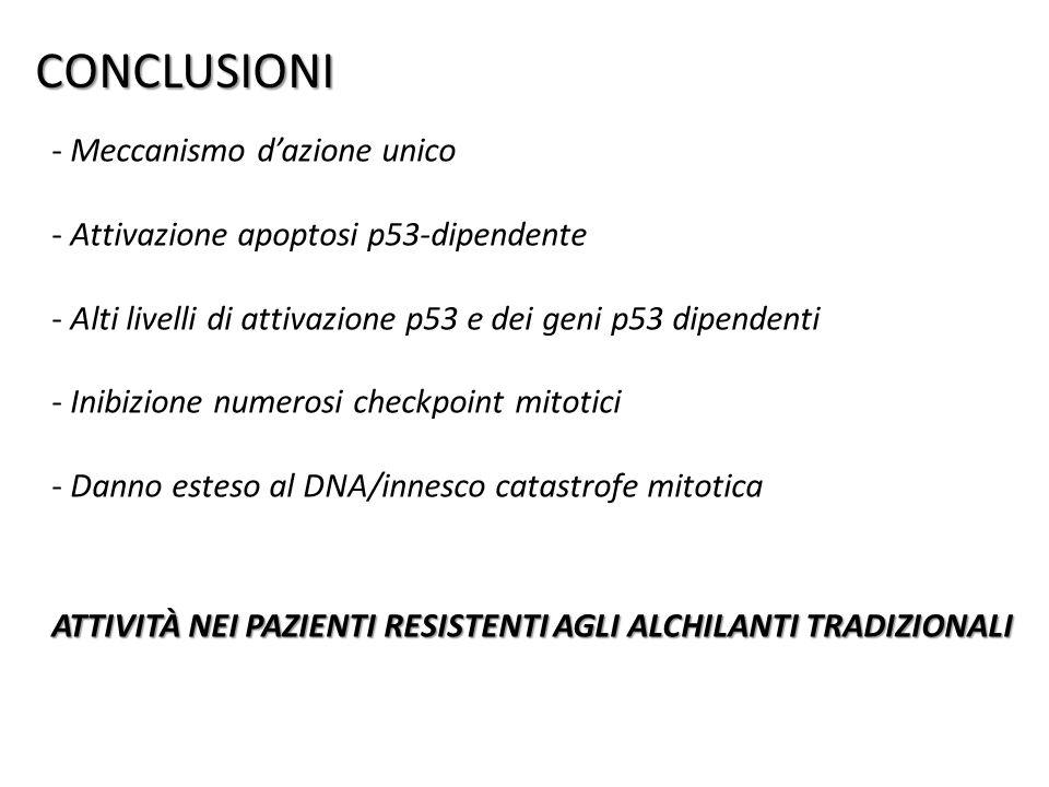 CONCLUSIONI - Meccanismo dazione unico - Attivazione apoptosi p53-dipendente - Alti livelli di attivazione p53 e dei geni p53 dipendenti - Inibizione numerosi checkpoint mitotici - Danno esteso al DNA/innesco catastrofe mitotica ATTIVITÀ NEI PAZIENTI RESISTENTI AGLI ALCHILANTI TRADIZIONALI