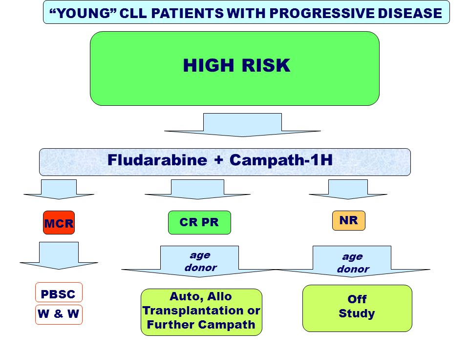 YOUNG CLL PATIENTS WITH PROGRESSIVE DISEASE Fludarabine + Campath-1H NR age donor Auto, Allo Transplantation or Further Campath MCR PBSC W & W CR PR HIGH RISK Off Study age donor