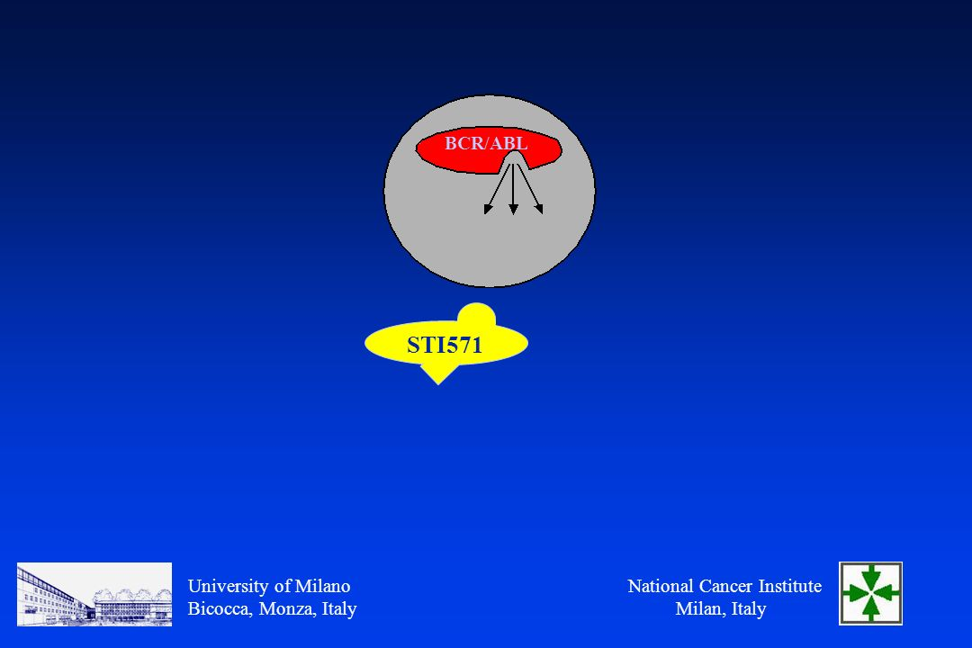 National Cancer Institute Milan, Italy University of Milano Bicocca, Monza, Italy BCR/ABL STI571