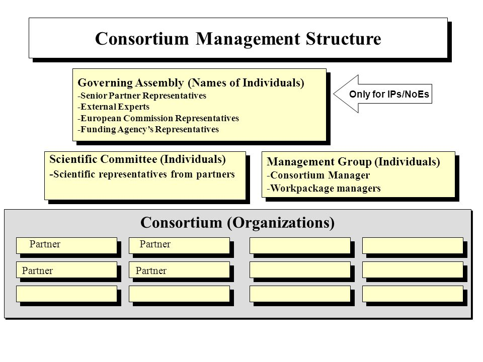 Consortium (Organizations) Consortium Management Structure Governing Assembly (Names of Individuals) -Senior Partner Representatives -External Experts
