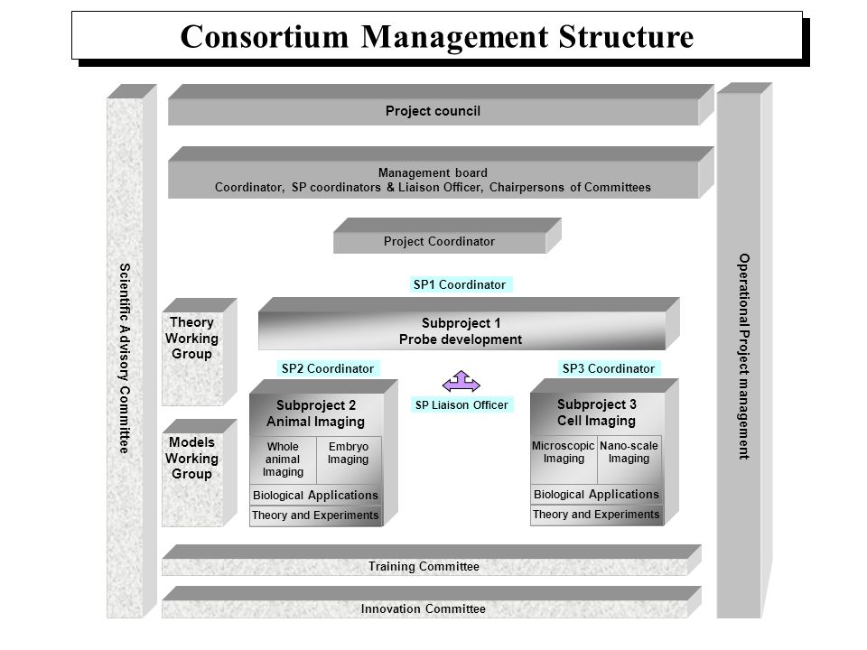 Consortium Management Structure Project Coordinator Operational Project management Scientific Advisory Committee Project council Training Committee In